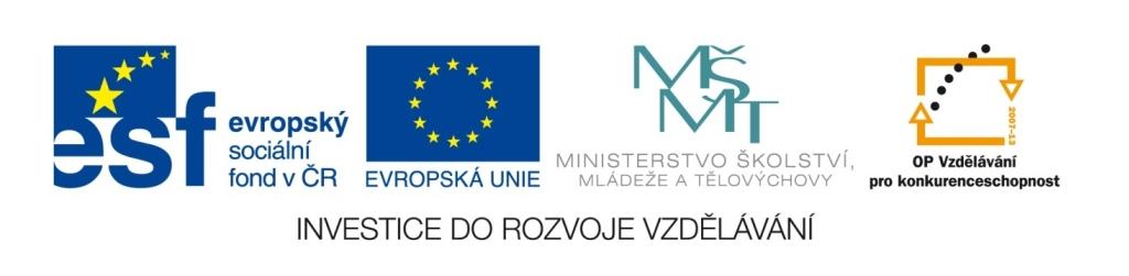 logo_ESF_MSMT